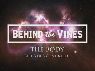 Music Video<br />Behind The Vines<br />'The Body'