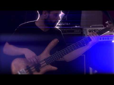 Joey Ryan Trio  'The Fall'  {Silverwood Sessions}